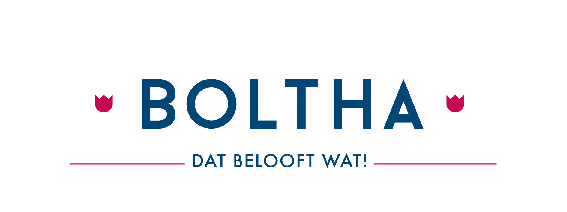 Huisstijl Boltha